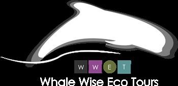 logo ola blanco